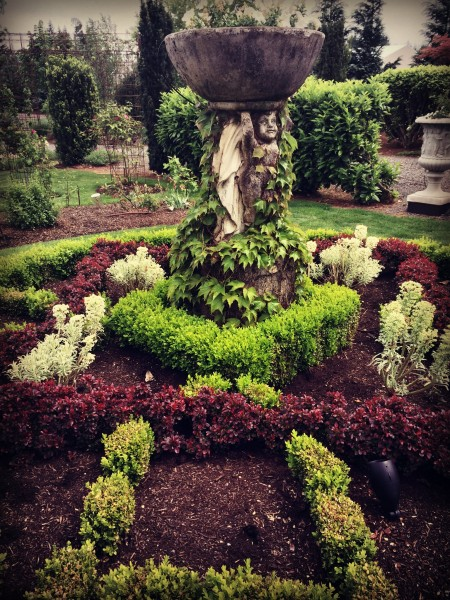 Laurel Hedge Knot Garden