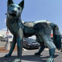 Meow Wolf Parking Lot